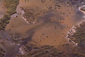 vervuild-water-door-goudwinning